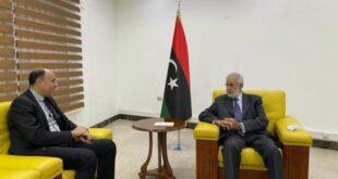 ليبيا.. مباحثات مع وفد مصري بشأن إعادة فتح السفارة بطرابلس