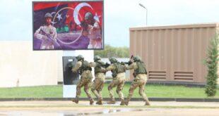 مصر وتركيا: شروط في ليبيا لا تعرقل التقدم